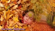 پاییز عاشق است