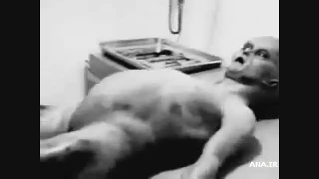 """اولین تصاویر منتشر شده از موجود فضایی""""رازول"""""""