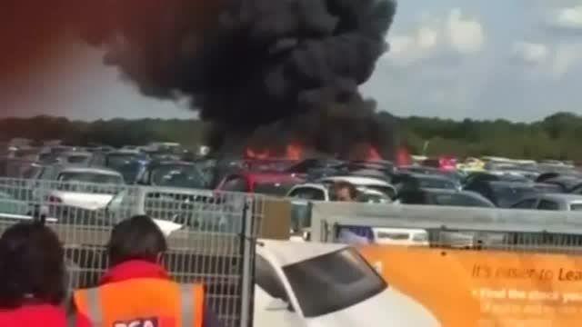 کشته شدن اعضای خانواده بن لادن در سقوط هواپیمای خصوصی