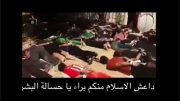 فیلم منتشر شده از جنایات داعش -18