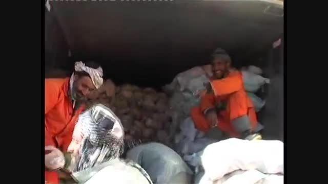 13 تن گوشت مرغ فاسد شده