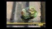 گزارش مشکل نبود سطل آشغال در شهر شیراز