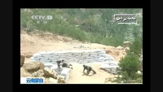 اشتباه مرگبار یک زن در ارتش چین