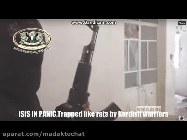 گرفتار شدن داعشی ها