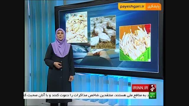 فعالیت 17 هزار واحد تولید مرغ در کشور