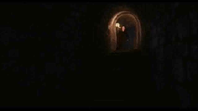 لولو خان حواسش نبود، با کله رفت دیوار!