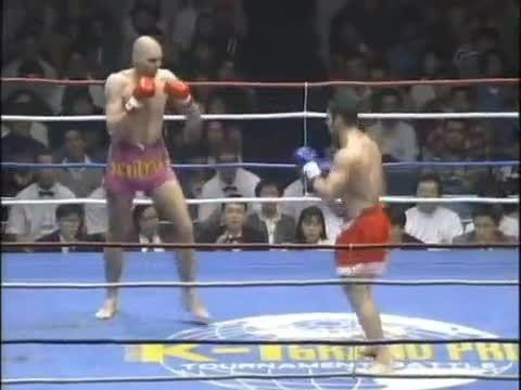 مبارزه اَندی هوگ و پیتر کِرامِر 1995