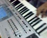 نوازندگی ارگ با KORG PA50 SD  توسط خودم