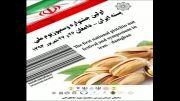 جشنواره ملی پسته ایران - دامغان