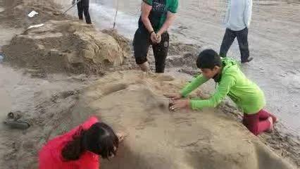 ساحل زیبای بندر گناوه. جشنواره سازه های شنی بهار 94
