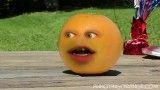 پرتقال اعصاب خوردکن و هندوانه