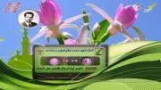 شیخ ضیایی - تفسیر آیه الرجال قوامون علی النساء ...