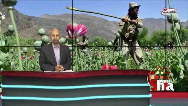 تلاش داعش برای دراختیار گرفتن بازارموادمخدردر افغانستان