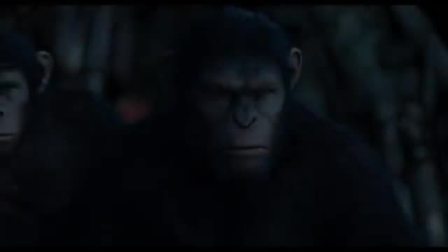 میمون ها فیلم تریلر سیاره سقوط