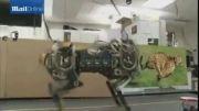 سریع ترین ربات جهان ساخته شد