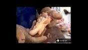 تولید سوسیس و کالباس با استفاده از ضایعات مرغ