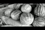 فیلم کوتاه ،به پاکی آسمان,به تیرگی زمین