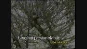 روز برفی تهران زمستان 1378
