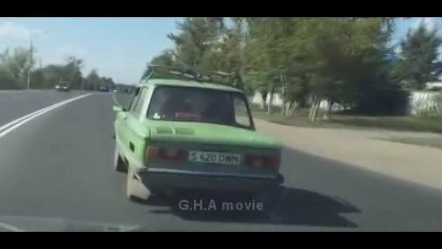 حمل گاو با خودروی سواری