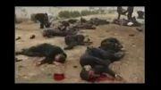 بازتاب کشتار مردم بیگناه غزه در جهان
