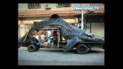 لاشه ای یک  کوسه نهنگ 16 تنی در وسط  شهر