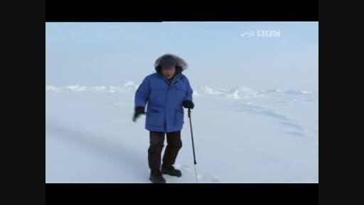 بر روی یخ نازک قطب شمال