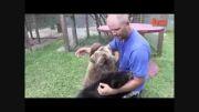 نگهداری از حیوانات وحشی در حیاط پشتی خانه از جمله دو بچ