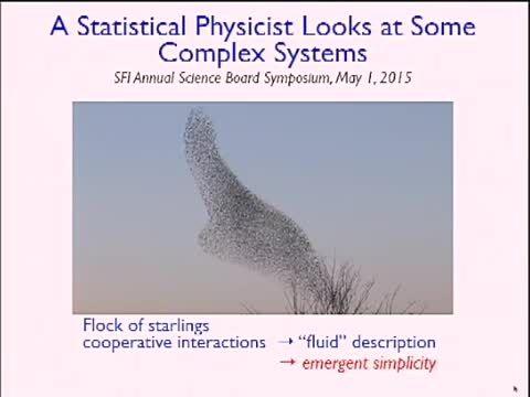بررسی چند سیستم پیچیده توسط یک فیزیکدان آماری
