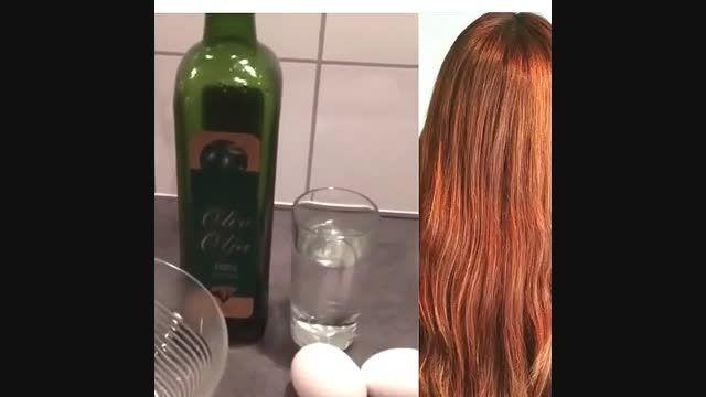 رنگ مو با تخم مرغ و روغن زیتون