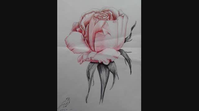 تصاویری ازکارهای هنری صادق اتش برگ...خطاطی نقاشی طراحی