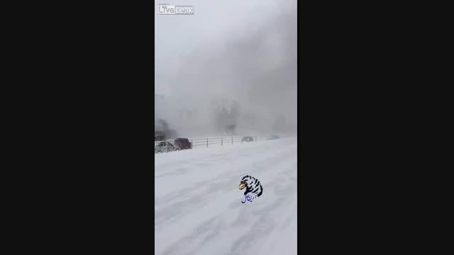 هشدار .....هرگز در مه و برف سریع نروید !!!!