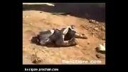 شهادت سرباز عراقی توسط بمب های تروریست ها