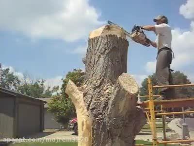 چگونه تنه درخت قطع شده در حیاط خانه خود را زیبا کنیم