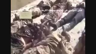 عاقبت سلفی(571)-سوریه-عراق-داعش