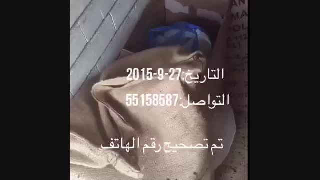 عوامل ایجاد طوفان و باران در حادثه مکه 27 ذوالقعده 1436