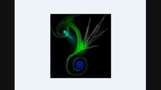 """13 تصویر از مخلوقات بسیار زیبای اثر """"زیباتر از طاووس"""""""