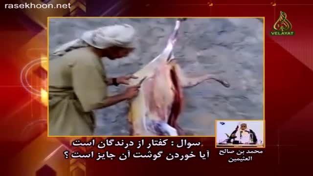 آبگوشت کفتار غذای مورد علاقه وهابی
