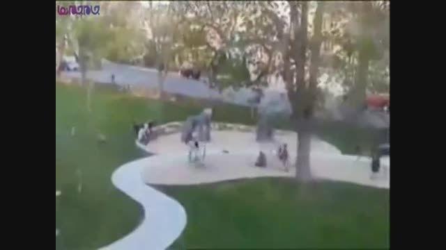 سقوط درخت روی بچه ها+فیلم ویدیو کلیپ حودث حادثه خطرناک