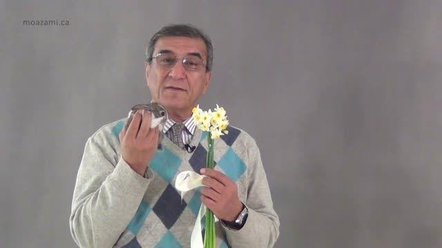 نوابغ فروش-محمود معظمی, آموزشی ویژه تنها برای افراد خاص