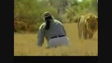 رهایی مرد باهوش از چنگال شیر