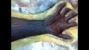 فایل11از23-آموزش ساخت مجسمه3تکه دیواری-مالش ژلکوت