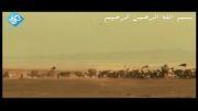 نماهنگ زیبای وصیت نامه امام حسین به برادرش