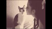 گربه زبل اما خجالتی!!!!!