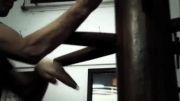 آموزش کاربردی کار با آدمک چوبی در وینگ چون توسط دیوید پترسون