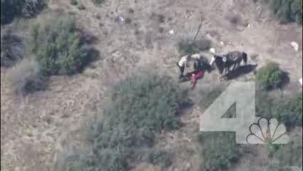 ضرب و شتم فجیع شهروند کالیفرنیایی توسط 11 مامور پلیس