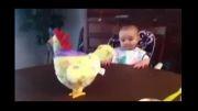 عکس العمل جالب کودک به تخم گذاشتن مرغ