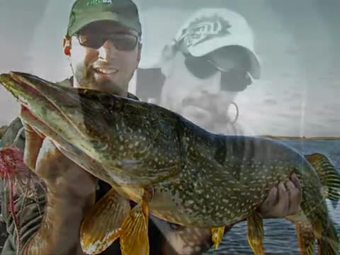 ماهیگیری مفرح ورزشی اردک ماهی  بزرگ در قلاب