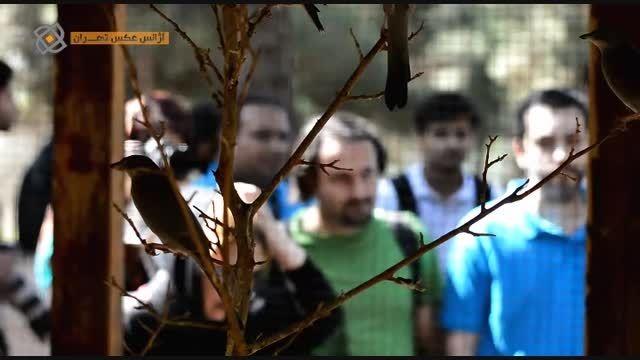 تور عکاسی آژانس عکس تهران به باغ پرندگان