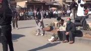 اعدام سه شهروند سوریه ای بدست گروه تروریستی داعش در ملا عام