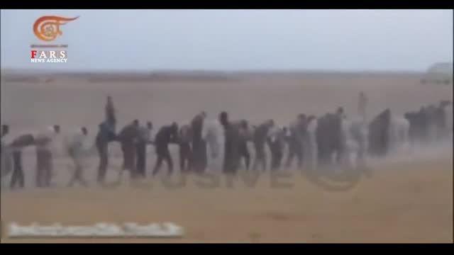 اسارت صدها داعشی توسط حزب الله عراق